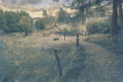 """Pausilipon"" © Alex Mavromaras. Early morning walk in the park. Approx. 8.5x6.5"" (22x17cm) handcrafted alternative process photograph (toned cyanotype on vellum, etched and painted over with drawing and watercolor pencils). GALLERY5X7 offers this signed, original print at $250."