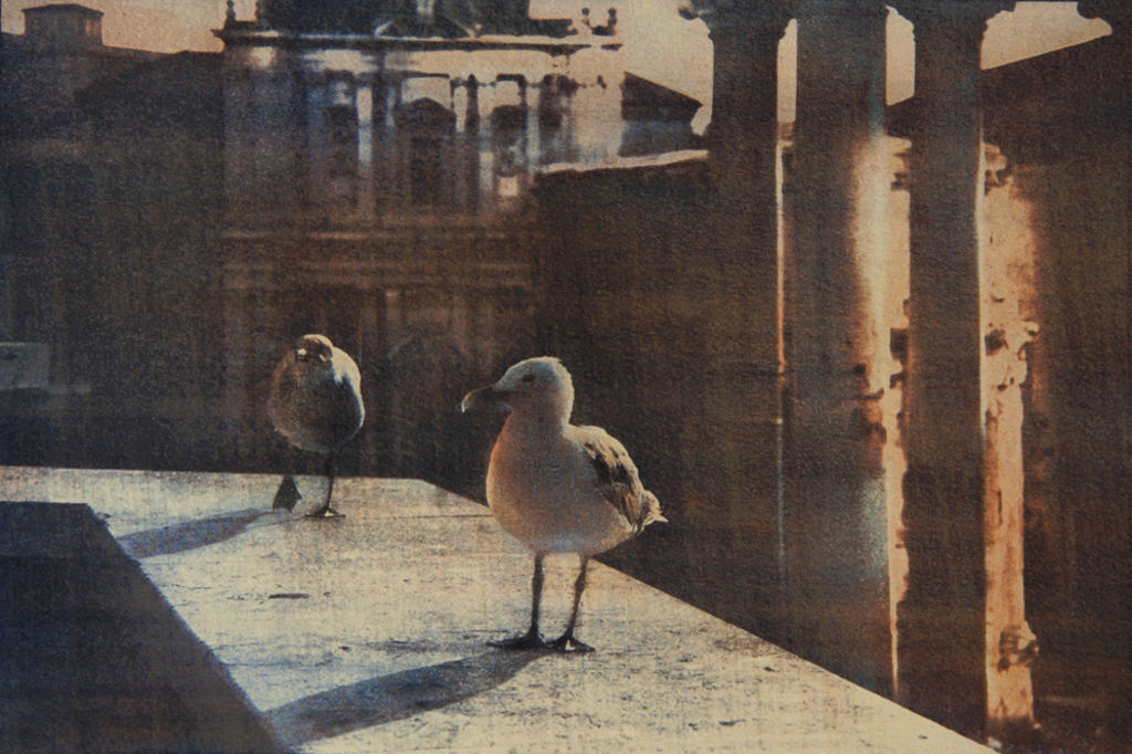 """""""The Owners Of The City"""" © Ana Melnikova. Rome, Italy. Approx. 7x11"""" (18.5x27.5cm) handcrafted alternative process photograph (gum bichromate print from a single negative, four natural-pigment color layers on Lana watercolor paper). GALLERY5X7 offers this original, signed print at $500."""