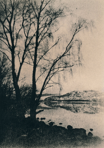 """Loch Rannoch. Trees"" © Iván B. Pallí. Approx. 14x20cm hand-printed silver gelatin lith print on Unibrom paper. Signed and numbered original print, edition 1/5, offered at $250."