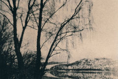"""""""Loch Rannoch. Trees"""" © Iván B. Pallí. Approx. 14x20cm hand-printed silver gelatin lith print on Unibrom paper. Signed and numbered original print, edition 1/5, offered at $250."""