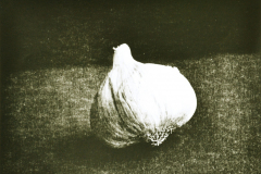 """Garlic"" © Barry Mayfield. Approx. 8.5X10.5"" (21X27cm) handcrafted alternative process photograph (silver gelatin lith print). GALLERY5X7 offers this signed, original print at $250."