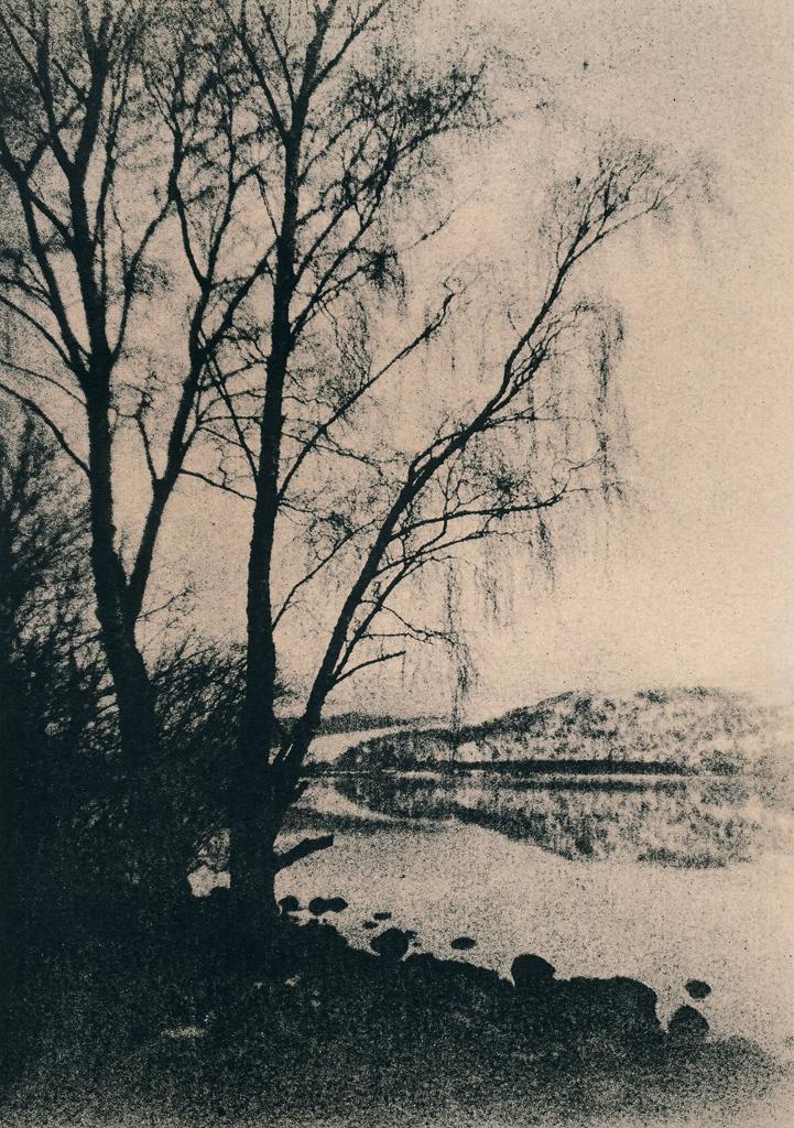 """Loch Rannoch. Trees"" © Iván B. Pallí.  Offered by GALLERY5X7."